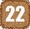 Вашето число в живота - 22